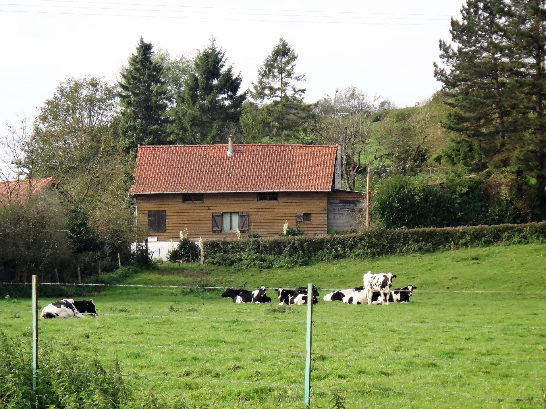 vente belle grange am nag e situ e dans un hameau proche d 39 hesdin. Black Bedroom Furniture Sets. Home Design Ideas